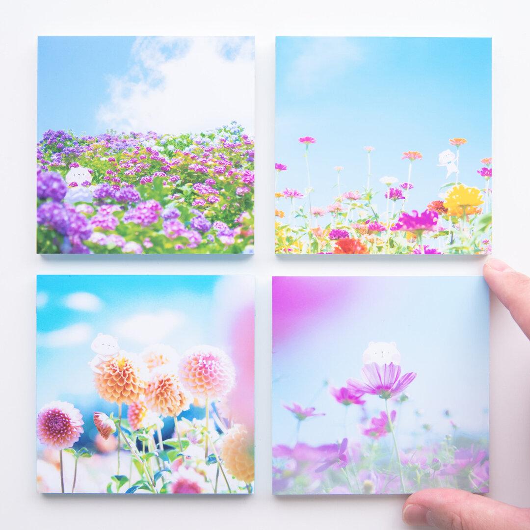 SQU4RE-スクエア-【青空に花とくまこ】新生活を彩るインテリアフォト