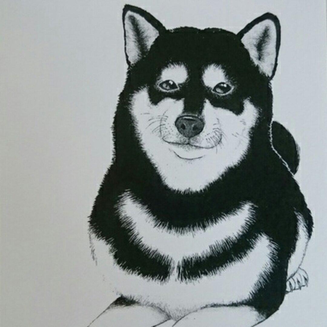 柴犬♥ブルドッグ!ポストカードセット