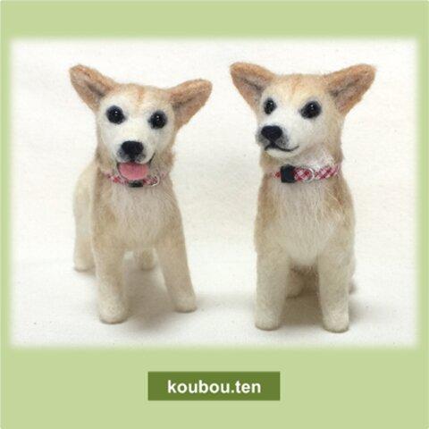 【オーダーメイド】MIXちゃん☆犬毛フェルトの小さなオブジェ「チビわんこ」お写真をモデルにお作りします