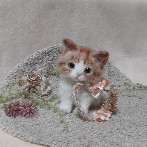 羊毛っ子 猫ちゃん♪ 天使 7