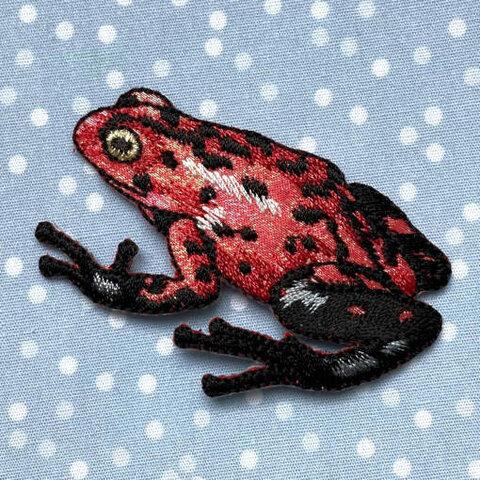 アップリケワッペンイチゴ ポイズンアロー カエル UI  蛙 2044 フロッグ かえる