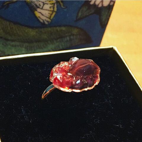 真っ赤なガラスの指輪 ピンキーリング