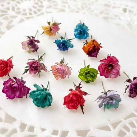 ドライフラワー 花材 素材 極小ミニバラ  リトルウッズ 染めMIX