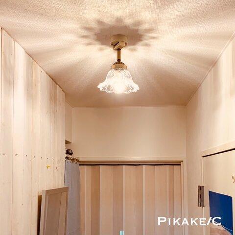 天井照明 Pikake/C ピカケ シーリングライト 角度自在器付器具 照明器具