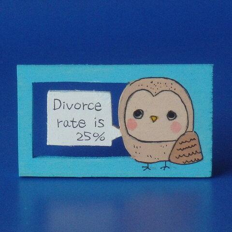 せつない動物図鑑➀ メンフクロウの夫婦の離婚率は25%