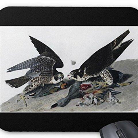 ハヤブサのイラストのマウスパッド:フォトパッド( 世界の野鳥シリーズ ) (黒地)
