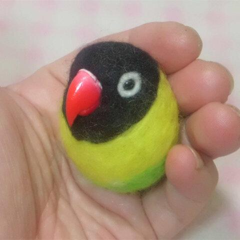キエリクロ ボタンインコ  ☆選べる2タイプ☆(Aマグネット・Bクリップ付ブローチピン)  コロコロ♪丸顔  羊毛の小鳥