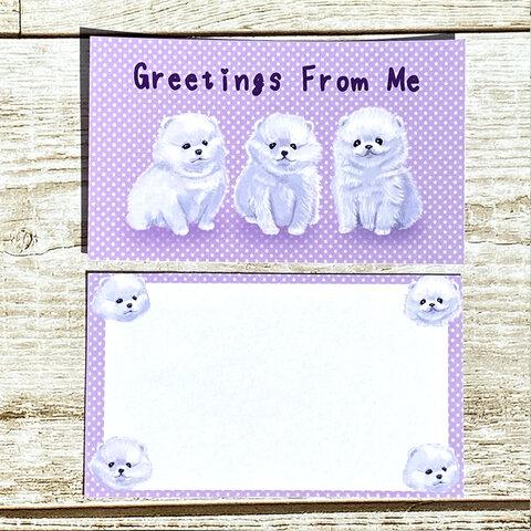 ポメラニアン子犬のメッセージカード 犬