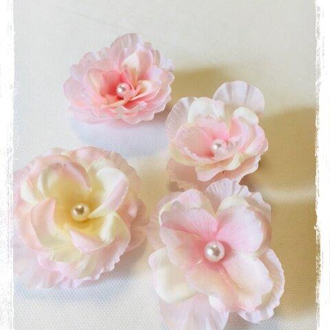 可愛い不思議な花