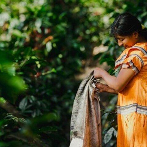 パナマ エルバンビート農園SHB(200g)※数量限定品