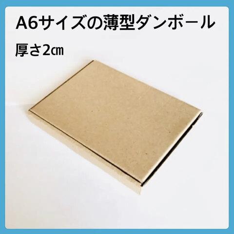 送料無料❣️ 12枚【⭐️⭐️⭐️】A6サイズの薄型ダンボール