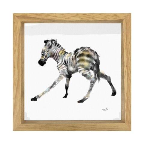 水彩画プリントスモールフレーム  Baby zebra the first step