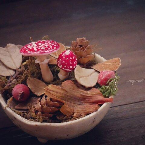 ベニテングダケのミニチュア盆栽