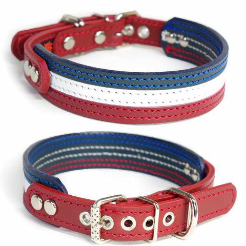 3cm幅中型犬用革首輪(フランスカラー)3cmTypeFB