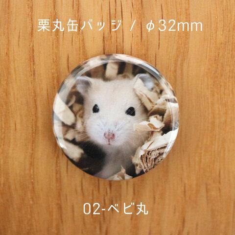 栗丸缶バッジ(32mmタイプ)【02-ベビ丸】