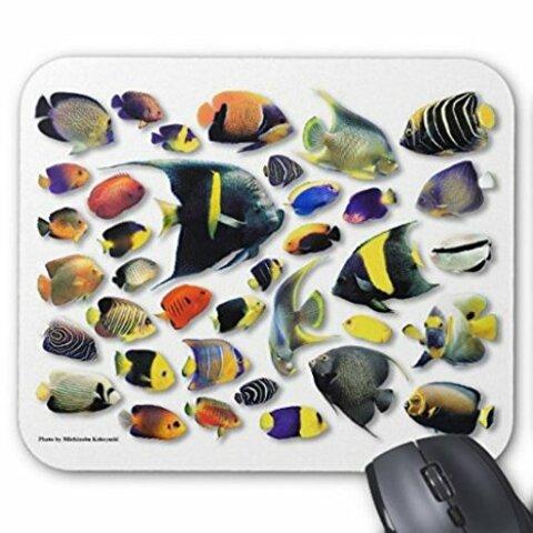 マリン・エンゼルフィッシュのマウスパッド:フォトパッド(世界の海水魚シリーズ)