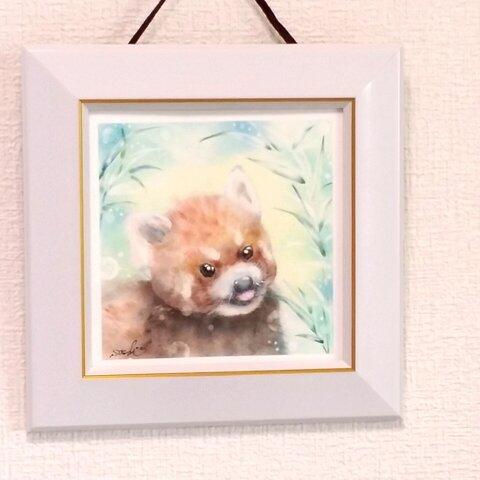 可愛いレッサーパンダと美味しい笹の葉(パステル原画)