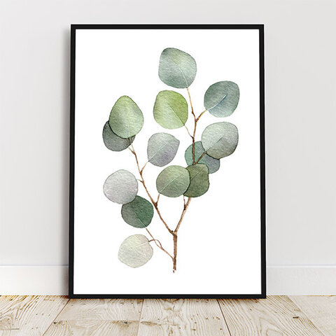 ユーカリ / アートポスター 水彩画 イラスト アートプリント 2L~ 観葉植物 葉っぱ 枝 プラント ナチュラル