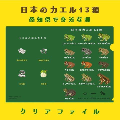 日本のカエル13種 ドット絵クリアファイル