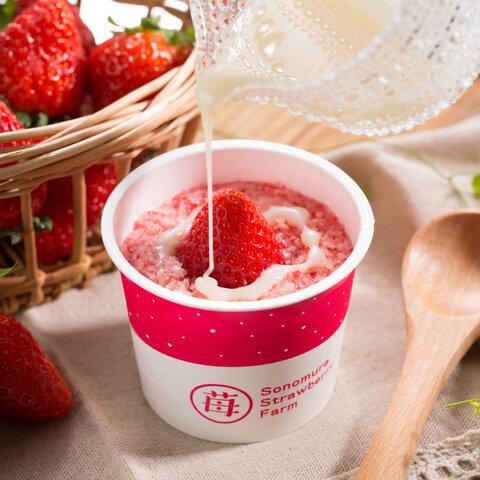 【12カップ】練乳かけるとイチゴミルクフローズンに!「さら苺」練乳付き