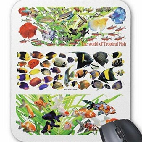 3グループの観賞魚のマウスパッド:フォトパッド( 世界の熱帯魚シリーズ )