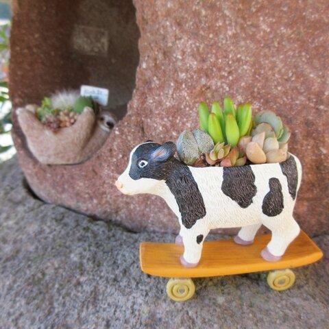 🆕スケボーに乗った陽気な牛さんの寄せ植え♡足・耳元のくすみ系カラーがオシャレ