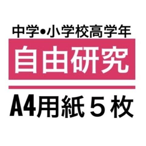 自由研究/中学生•小学校高学向け/「錯覚について」/A4用紙5枚程度