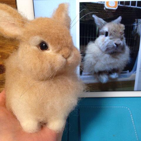 羊毛フェルト:愛兎ちゃんそっくり人形(Sサイズ)