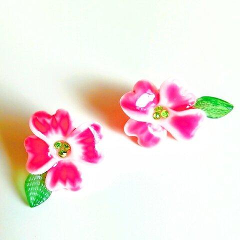 ハナミズキ(花水木)のピアス