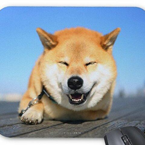 柴犬のマウスパッド 1:フォトパッド(世界の犬種シリーズ) (柴犬まる)