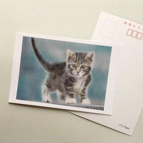 2ポストカード 子猫の冒険 6枚セット