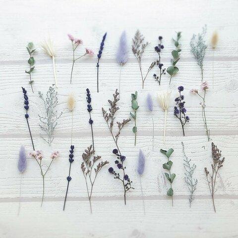 30本 ドライ&プリザーブドフラワー 茎付き アソート 結婚式 席札 メニュー ウェディング bouquet018