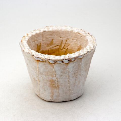 陶器製(2.5号ポット相当) 多肉植物の欲しがる植木鉢 SMS-442