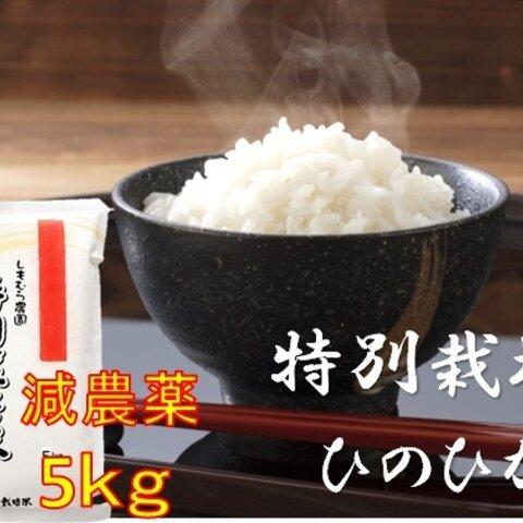 もっちりつやつや特別栽培米5kg 【減農薬米】佐賀県産ヒノヒカリ