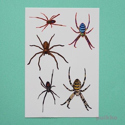 蜘蛛 タトゥーシール
