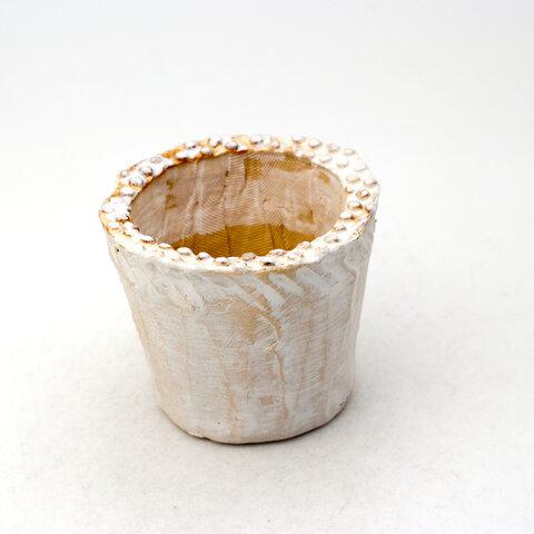 陶器製(2号ポット相当) 多肉植物の欲しがる植木鉢 NSSS-433