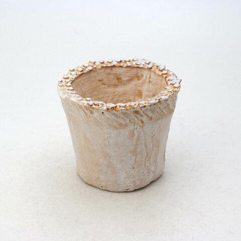 陶器製(2号ポット相当)多肉植物の欲しがる植木鉢 NSSS-8276