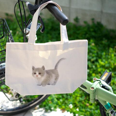 トートバッグ マンチカンの子猫