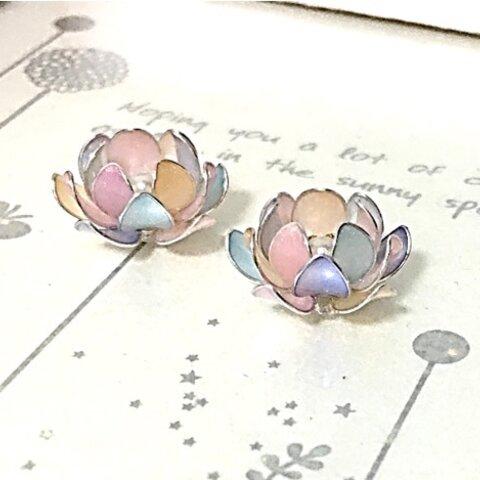 モザイクシェルの蓮の花 Pale Rainbow