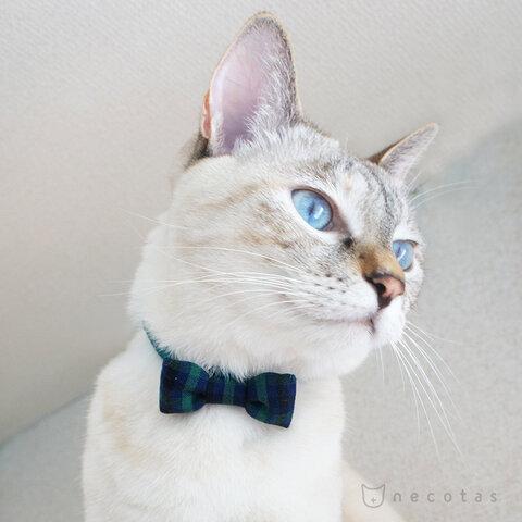リボン猫首輪* タータンチェック グリーン