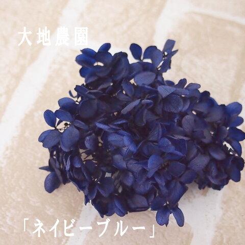 【単品】紫陽花プリザーブドフラワー「ネイビーブルー」大地農園