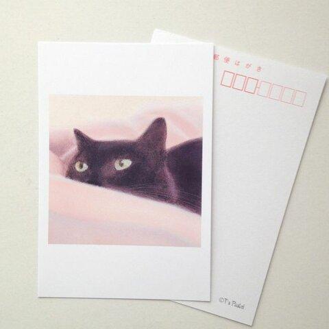 69ポストカード 黒猫 6枚セット