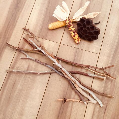 7本 セット ユーカリ 枝 木 天然 ナチュラル インテリア DIY 素材
