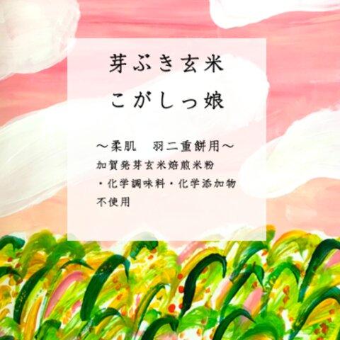 もち米粉 『芽ぶき玄米こがしっ娘 ®』~羽二重餅・大福餅用~ 400g 1袋
