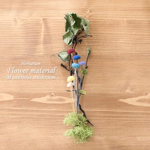 【ハーバリウムキット】 ハーバリウム 花材セット1本分 (不思議なキノコ)
