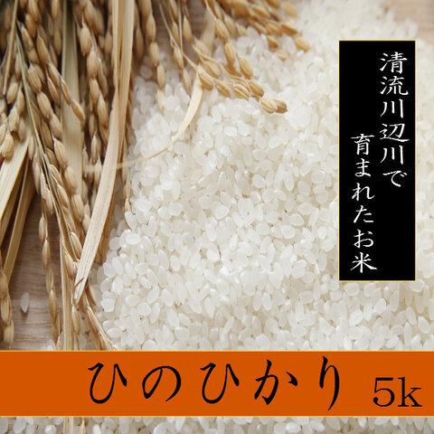 新米精白米ひのひかり5kg 熊本県相良村産 令和3年産