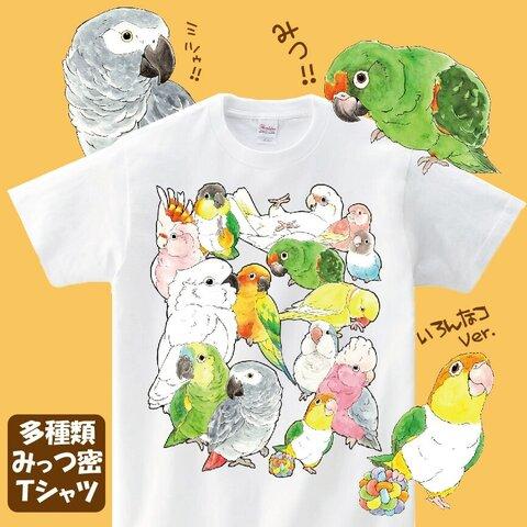 多種みっつ密Tシャツ【XL】