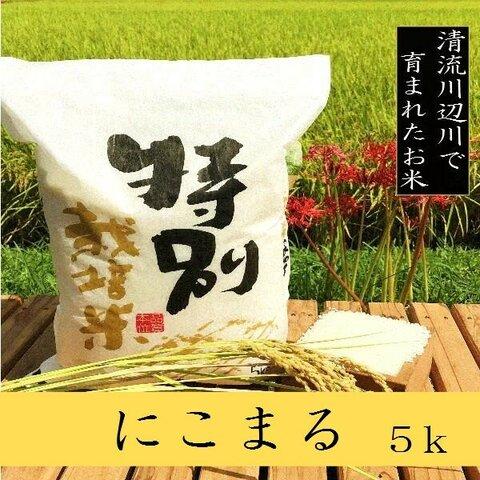 新米特別栽培米にこまる5kg 熊本県相良村産 令和3年産 1等米 精白米