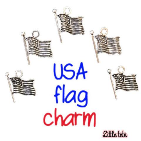 USA flag charm5個