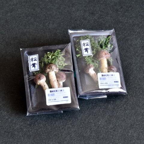 [青果コーナー]松茸[ミニチュアフード ・ドールハウス]
